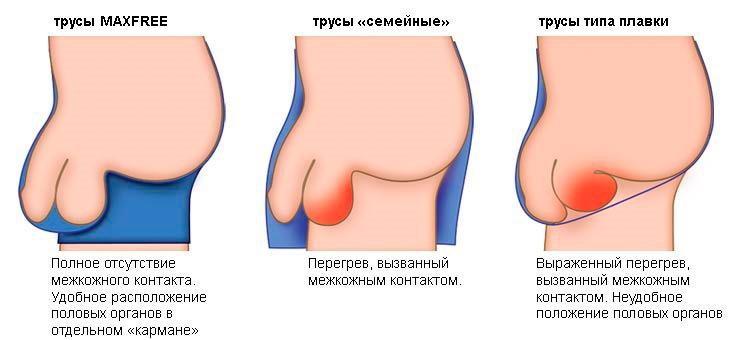 Így öregszik a pasik pénisze