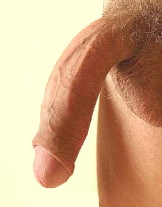 szexterapeuta pénisz serkentik a férfiak erekcióját