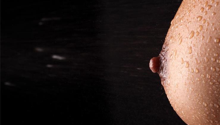 pénisz mellbimbója