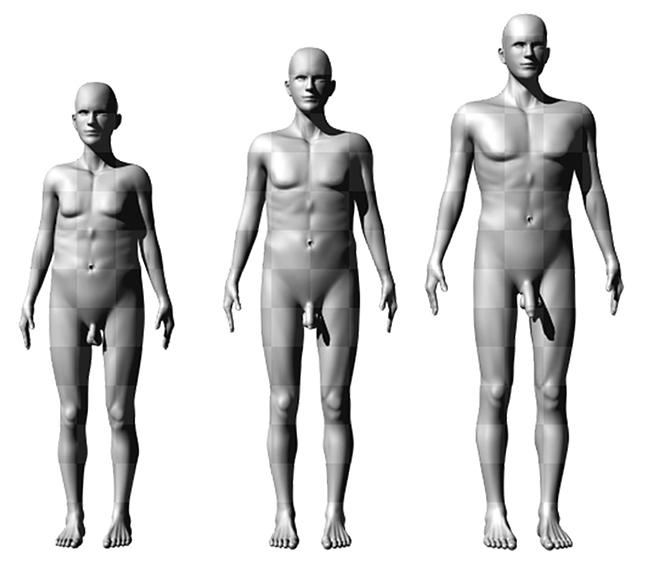 milyen méretűek a férfiak péniszei az erekció eltűnik az intimitás pillanatában