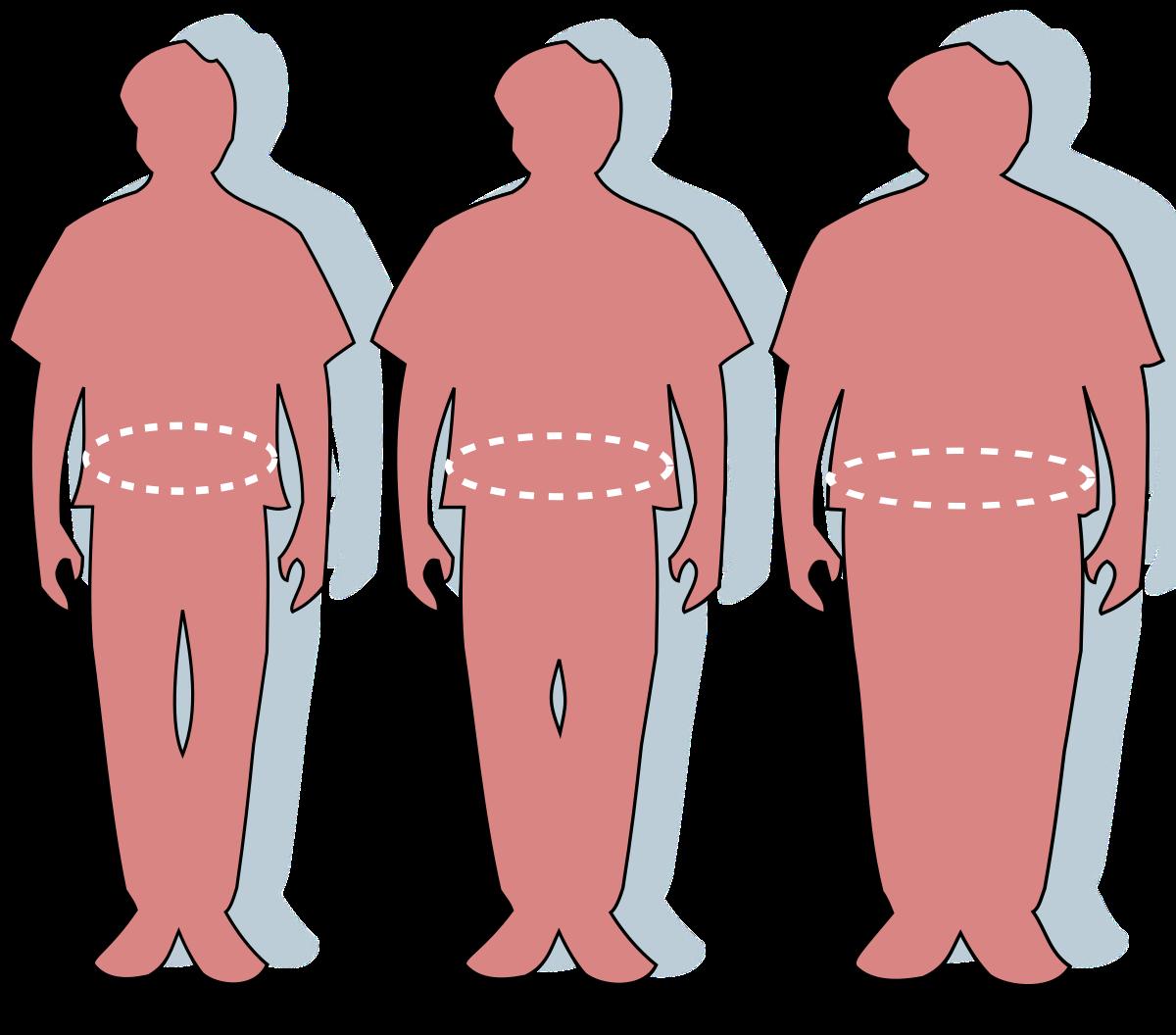 A kövér embereknek kisebb péniszük van?