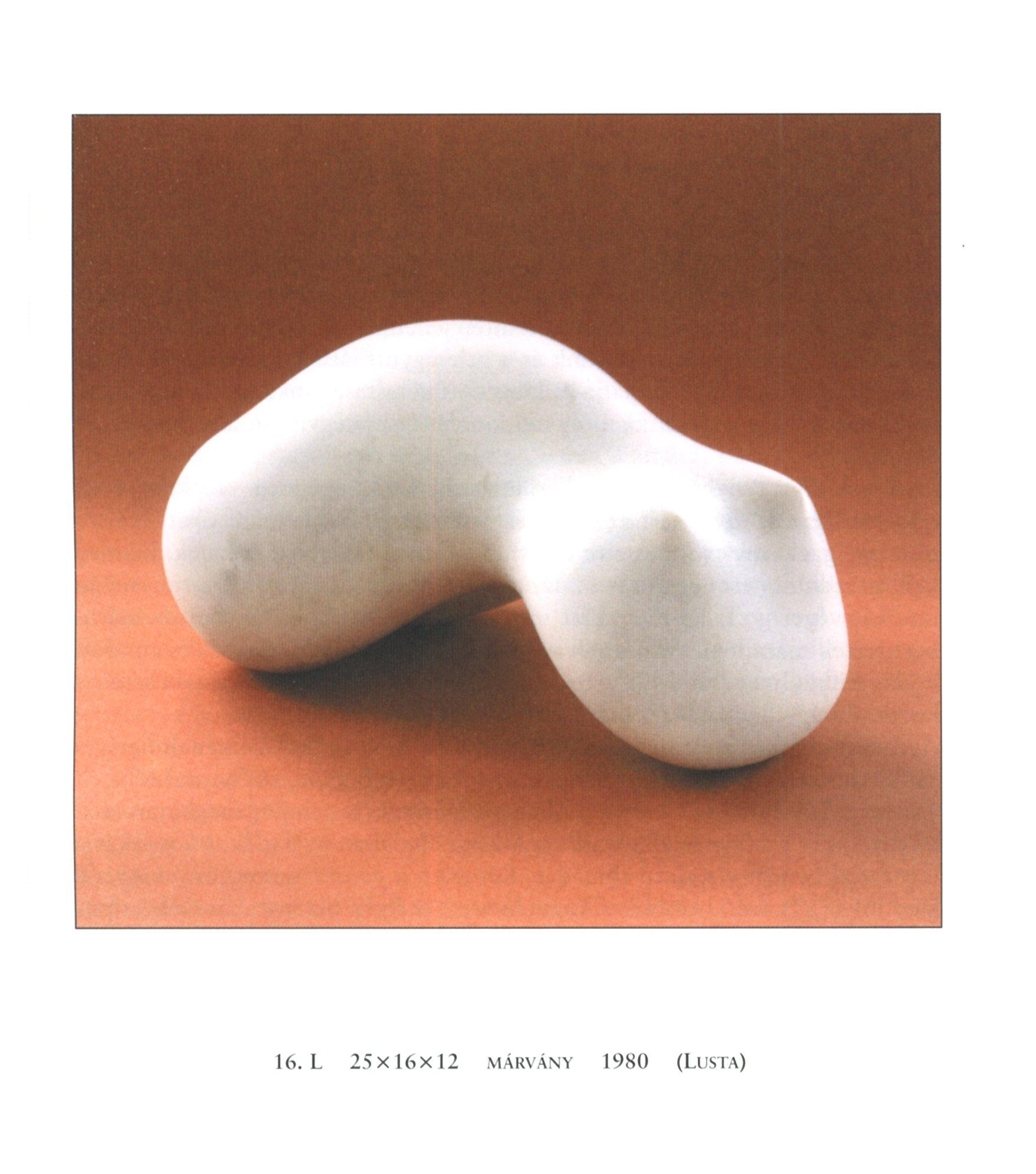 erekció előtt és után hogyan lehet erekciót készíteni a péniszről