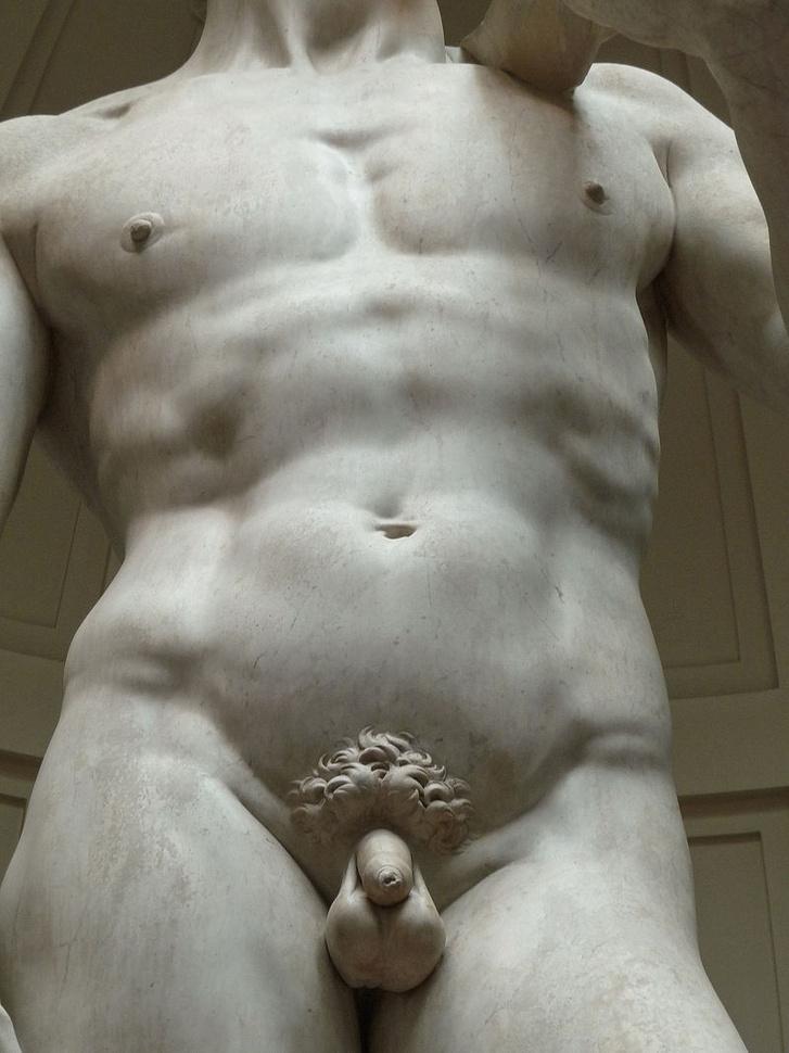 befolyásolja-e a tesztoszteron az erekciót miért ellenőrzik az orvosok a péniszt