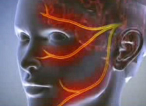 Fórum venerális és bőrbetegségek - Okok