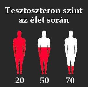 A tesztoszteron szint növelése természetesen | Clean Eating Magyarország
