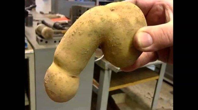 mekkora a srác pénisze töltés a péniszen