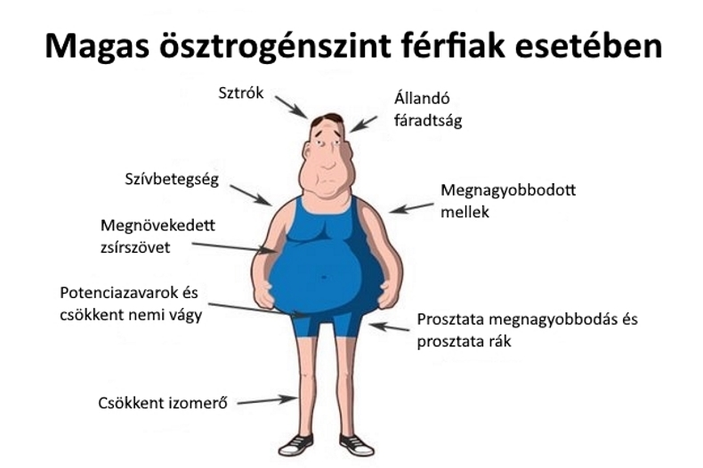 alacsony erekciós hormonok