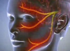 Mi a prosztata és milyen funkciója van a férfi testben? - richihir.hu